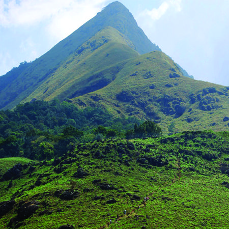 Trekking is the most popular activity at grassroots wayanad